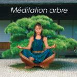 Méditation arbre